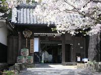 土井酒造.jpg